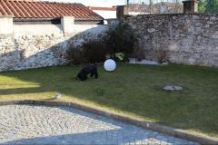 Giardino Romagnano sesia verdedeisgn