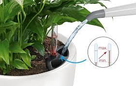 Vaso a riserva d'acqua lechuza azienda floricola donetti irrigazione